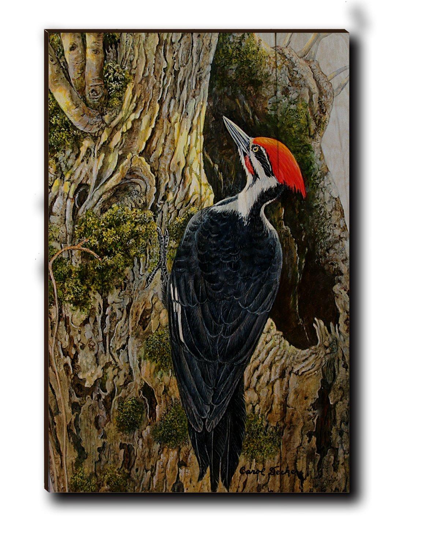 Wall Art WA-WCP-1624 Woodcarver Pileated 16 x 24
