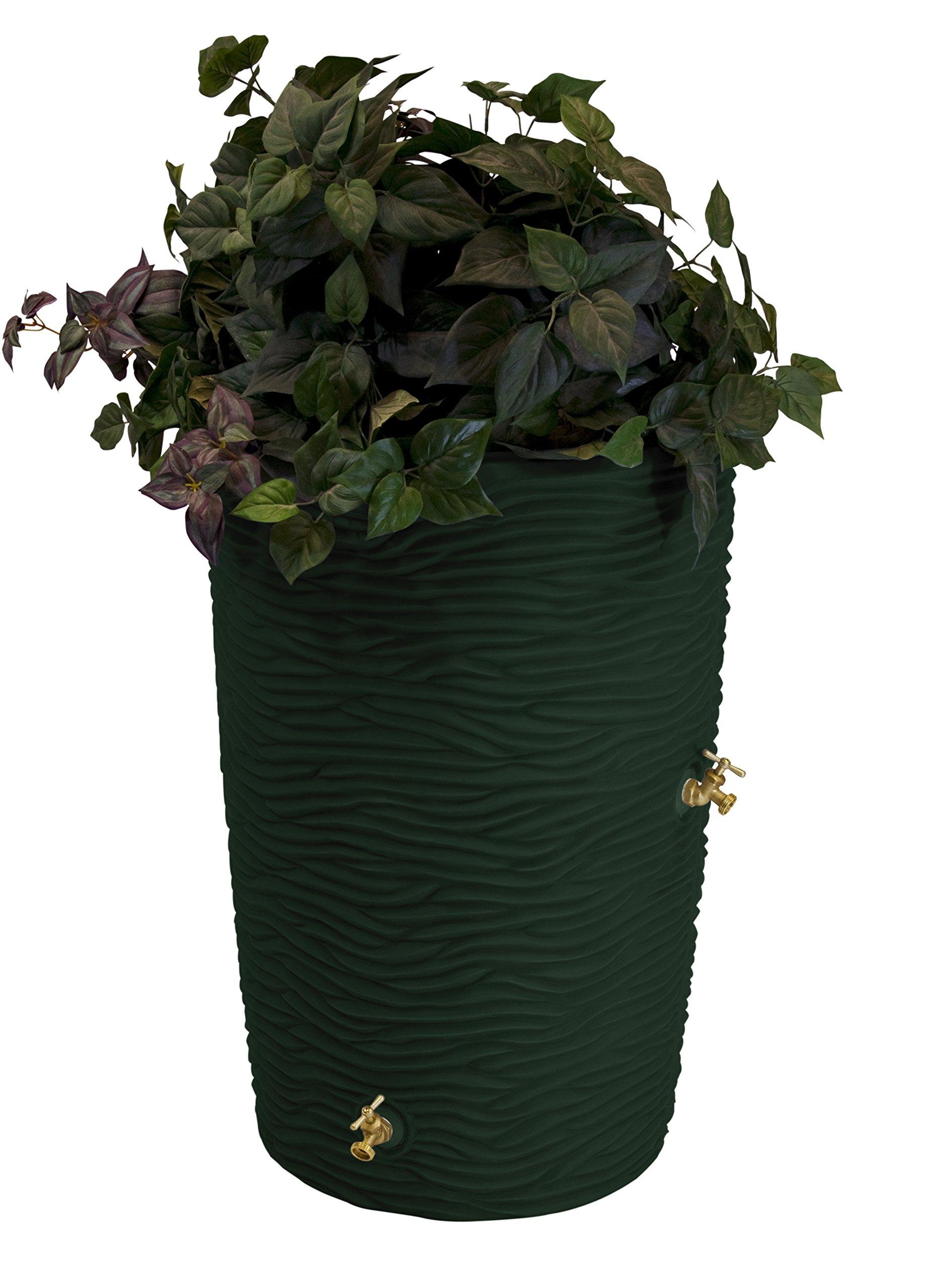 Good Ideas IMP-L50-GRN Impressions Palm Rain Barrel, 50-Gallon, Green