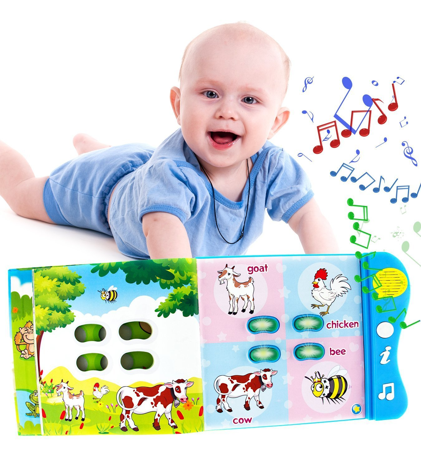 Amazon Animal Learning Sound Book by Boxiki Kids Toys & Games