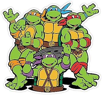 Amazon.com: Teenage Mutant Ninja Turtles Cartoon Vinilo ...