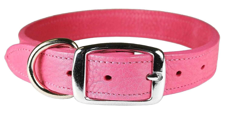 Flamingo Pink 1\ Flamingo Pink 1\ OmniPet 6268-FL22 Luxe Leather Dog Collar, Flamingo Pink, 1  x 22