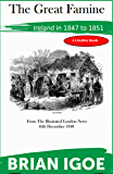 The Great Famine - a Survey (English Edition)