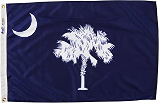 product image for Annin Flagmakers Model 144850 South Carolina Flag Nylon SolarGuard NYL-Glo, 2x3 ft, 100% Made in USA to Official State Design Specifications