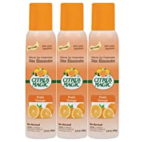 Air Freshener by Citrus Magic