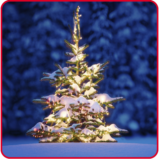 Super Christmas Wallpapers (Christmas Super Wallpapers)