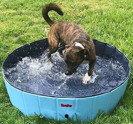 Amazon.com : BINGPET Large Dog Swimming Pool Pet Bathtub Collapsible ...