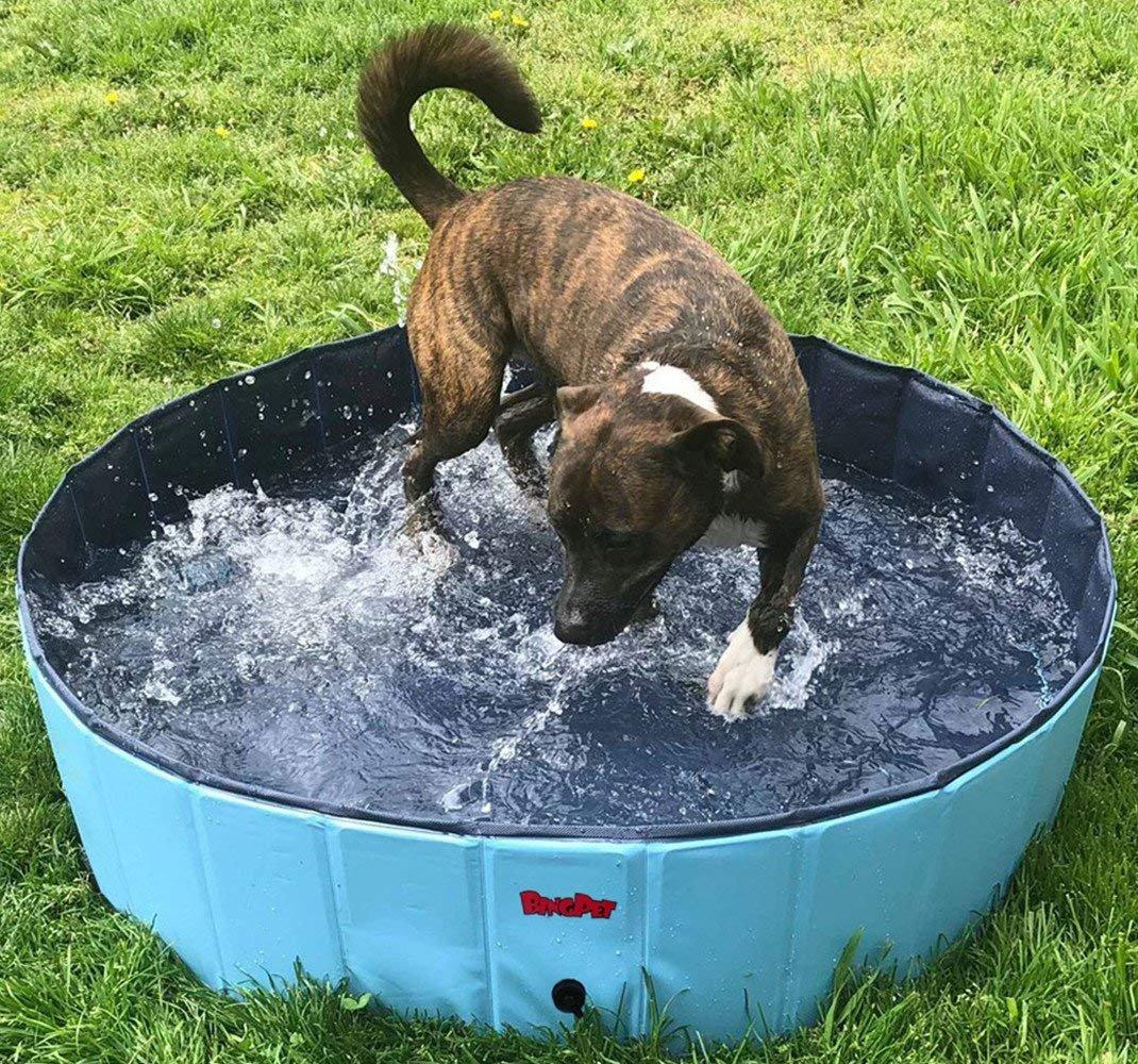 BINGPET Large Dog Swimming Pool Pet Bathtub Collapsible Puppy Bath Tub 63'' 12''