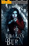 Dragon Burn: A Dragon Shifter Romance (The Omen Club Book 1)