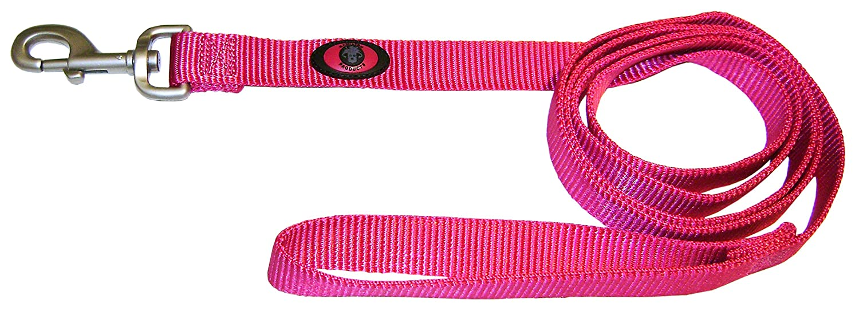 Raspberry 1\ Raspberry 1\ Hamilton 1-Inch Single Thick Nylon Lead with Swivel Snap Brushed Hardware, 4-Feet Long, Raspberry