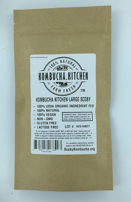 Amazon.com: Kombucha Kitchen Genuine KOMBUCHA CULTURE (HUGE SCOBY ...