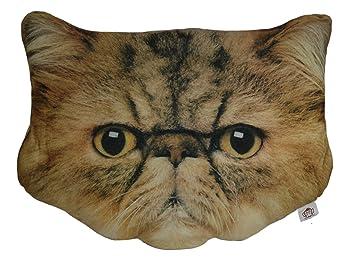 Amazon.com: Cheeky Baldrick – Cojín cara de gato cojín ...