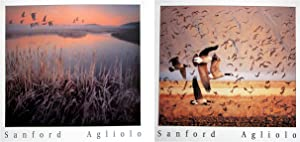 Flying Canada Geese Wild Bird Picture 16x20 Two Set Wall Decor Art Print Posters