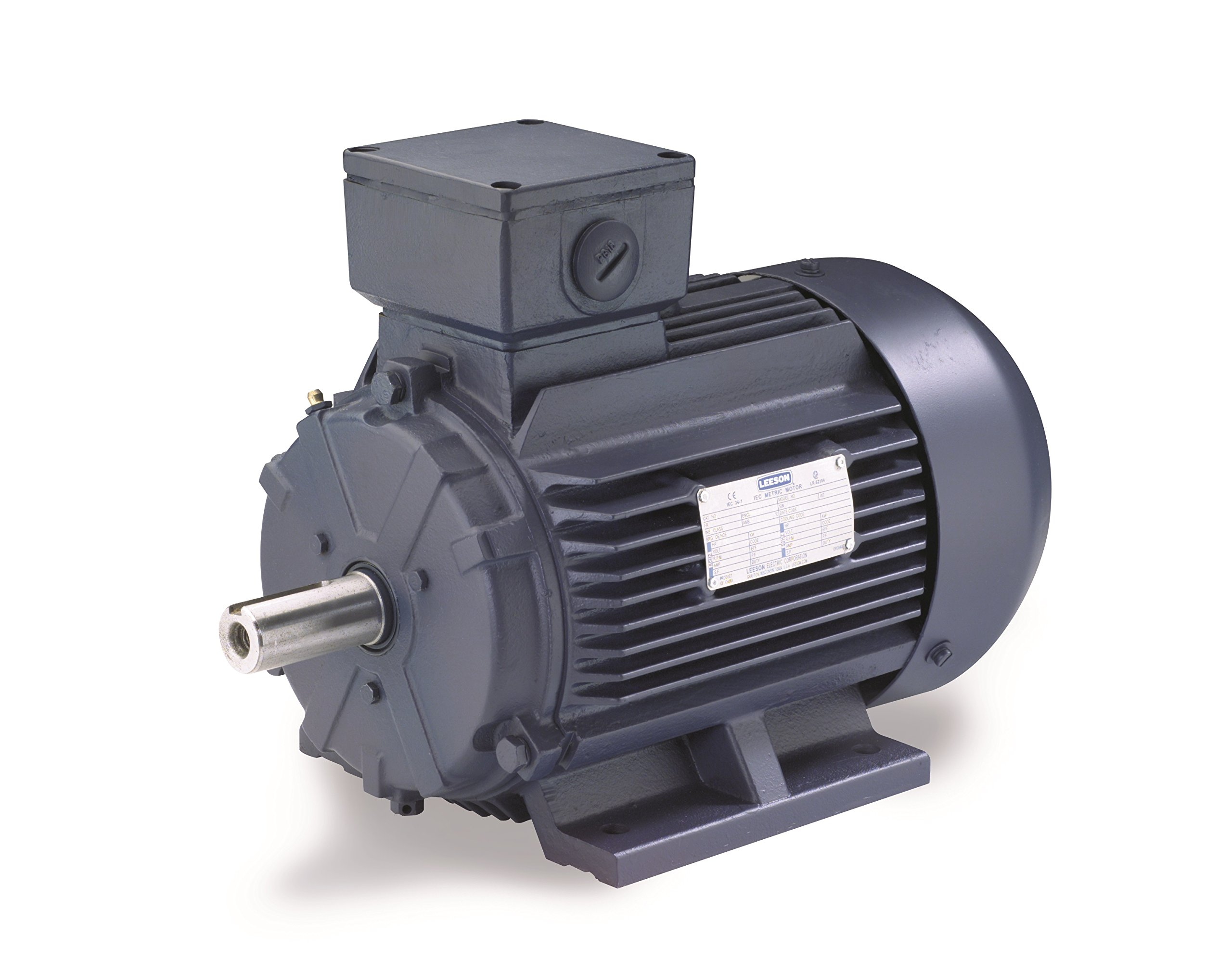 Leeson 193379.60 Rigid Base IEC Metric Motor, 3 Phase, 100L Frame, Rigid Mounting, 3HP, 1800 RPM, 575V Voltage, 60Hz Fequency