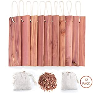 GOGOUP Cedar Blocks for Clothes Storage, Hanger & Chips Bag with Light Cedar Fragrance Odor Protection for wardrobes Closets and Drawers Freshener Clothes 12-Pack