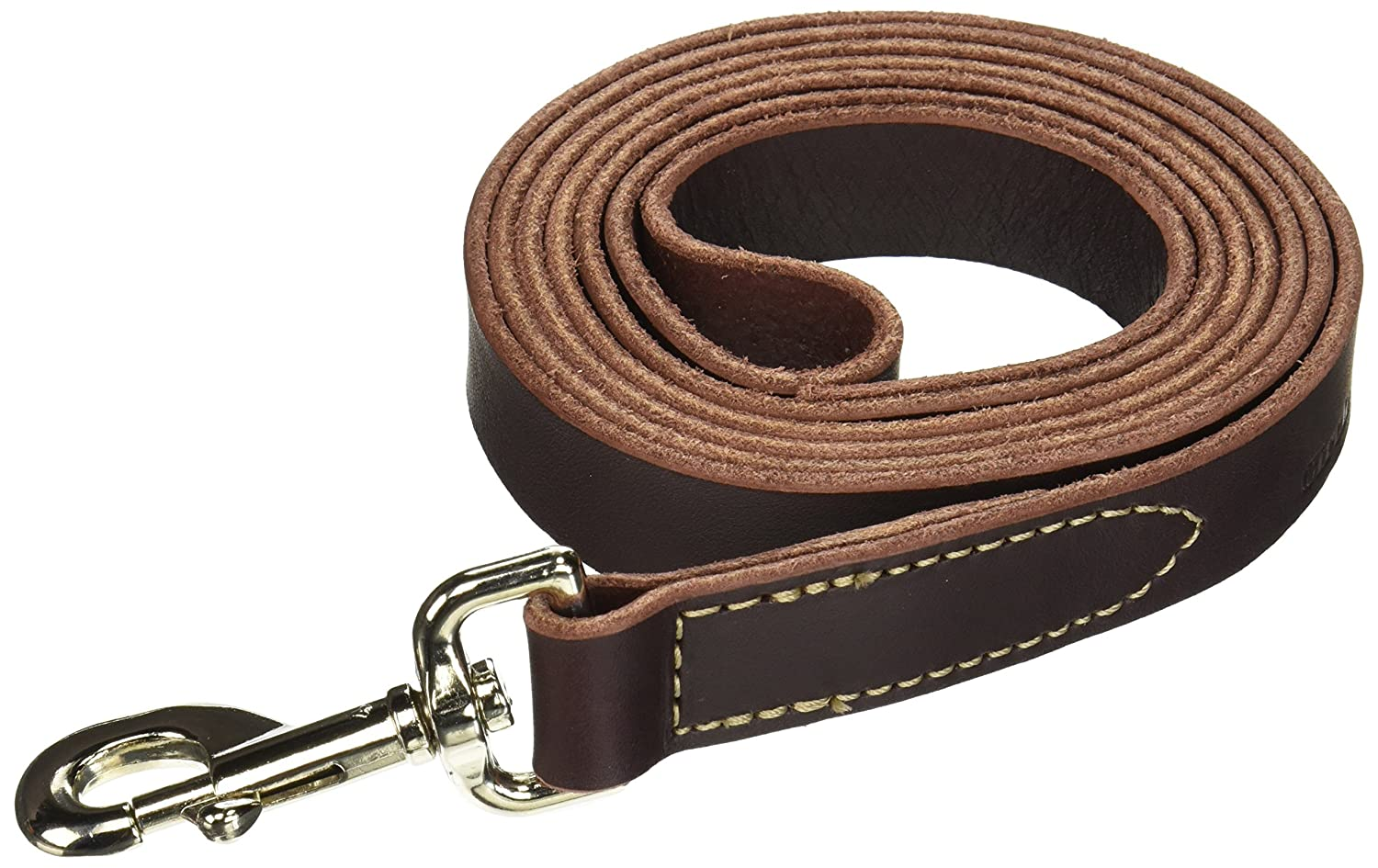 Coastal Pet Products DCP2068 1-Inch by 6-Feet Leather Circle T Latigo Dog Leash with Nickel Plated Snaps