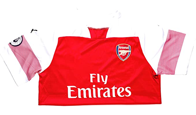 cea46de0b Arsenal Adult Replica 18 19 Short Sleeved Home Shirt retains the  traditional red and white colours ...