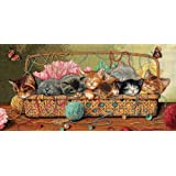 Dimensions D35184 | Kitty Litter Picture Counted Cross Stitch Kit | 46 x 23cm