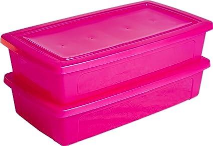 Iris Ohyama Europe Caja de almacenamiento x 2, caja de almacenaje, caja plastico Rosa
