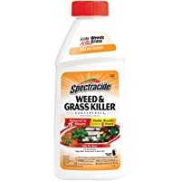 Spectracide HG- Weed and Grass Killer Concentrate