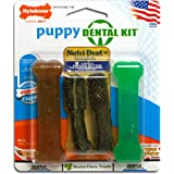 Nylabone Dental Kit for Small Puppies