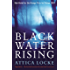 Black Water Rising (Jay Porter Book 1)