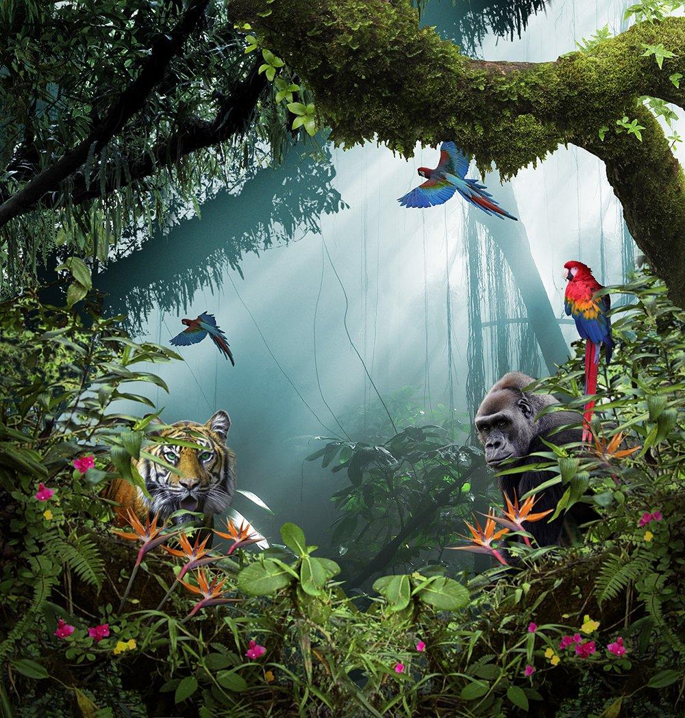 写真バックドロップ – In the Jungle with Tiger – 10 x 10 ft。 – 高品質シームレスなファブリック   B00OJFRBFY