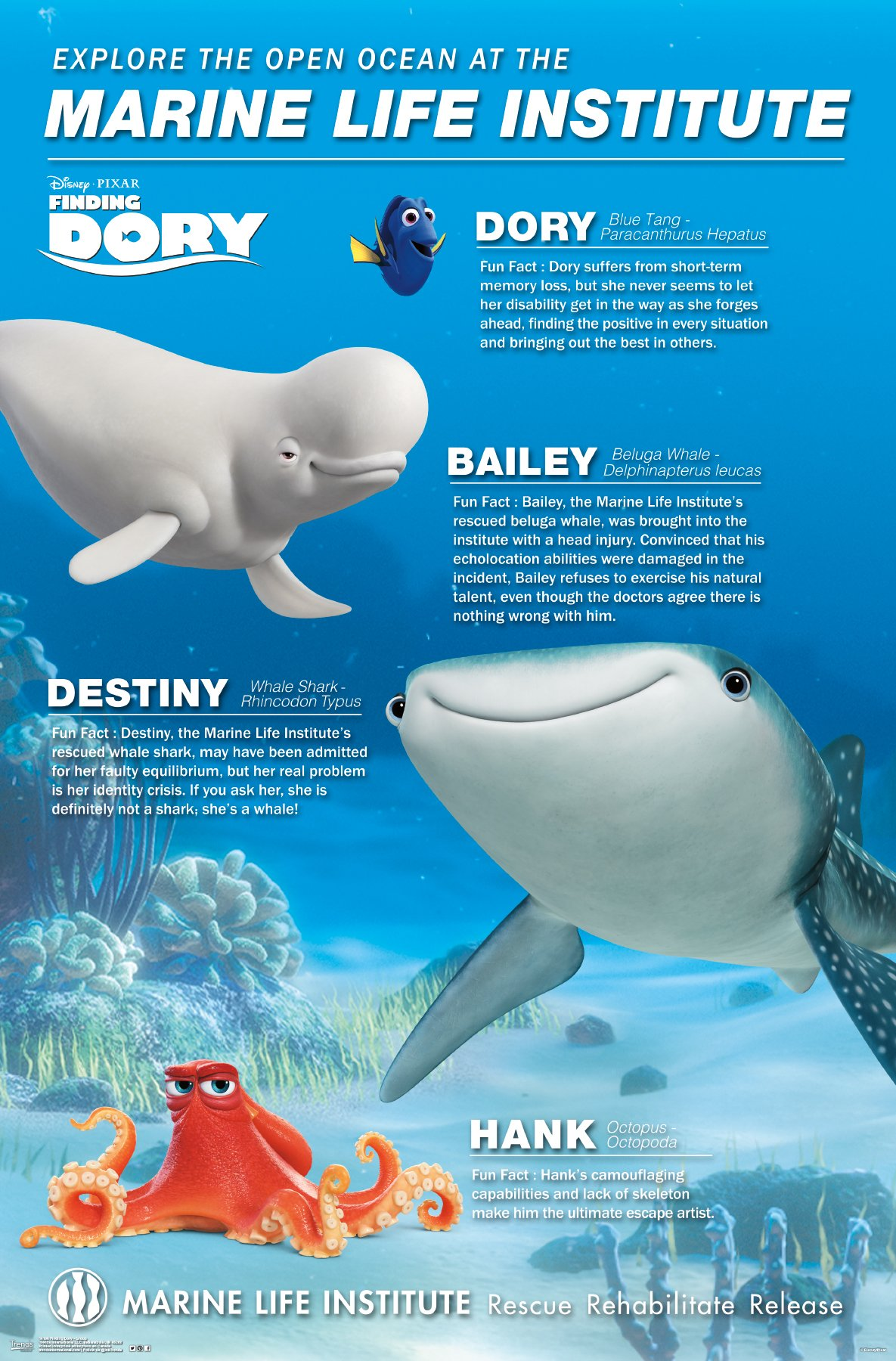 Trends International Finding Dory Group Wall Poster 22.375'' x 34''