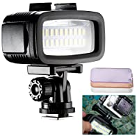 Neewer® LED con 20 Lampadine Resistenza all'Acqua fino a 40 Metri Sotto Acqua 700LM Flash Dimmerabile Illuminazione Supplementare con 3 Filtri (Bianco, Arancione, Viola) per GoPro Hero 4 3+ Action Cam & Reflex Digitali
