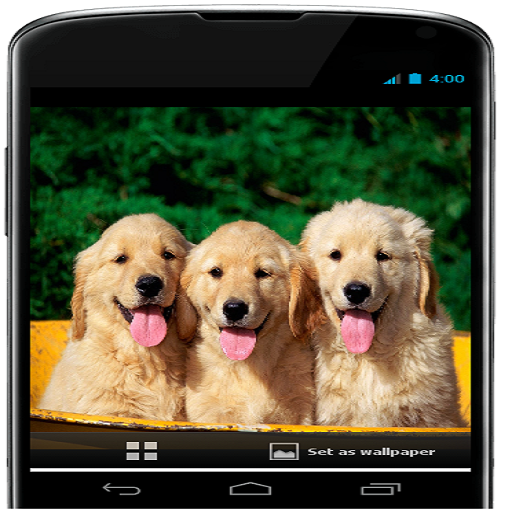 Amazon Com Cute Dog Wallpaper Appstore For Android