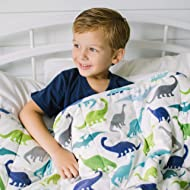 HomeSmart Products Weighted Blanket for Kids and Toddlers - 5lbs 40x60 - Dinosaur Print on One Side, Grey on The Other - Ultra Soft Minky Material - Machine Washable