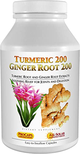 Andrew Lessman Turmeric 200 Ginger Root 200-60 Capsules Naturally Soothe The Joints and Digestive Systems. Two Pure Extracts. Protective, Anti-Aging, Anti-oxidant Properties. No Additives