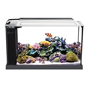 Fluval 10528A1 Evo V Marine Aquarium