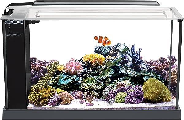 Nano-Reef-Tank