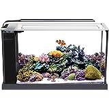 """Fluval 10528A1 Evo """"V"""" Marine Aquarium Kit"""