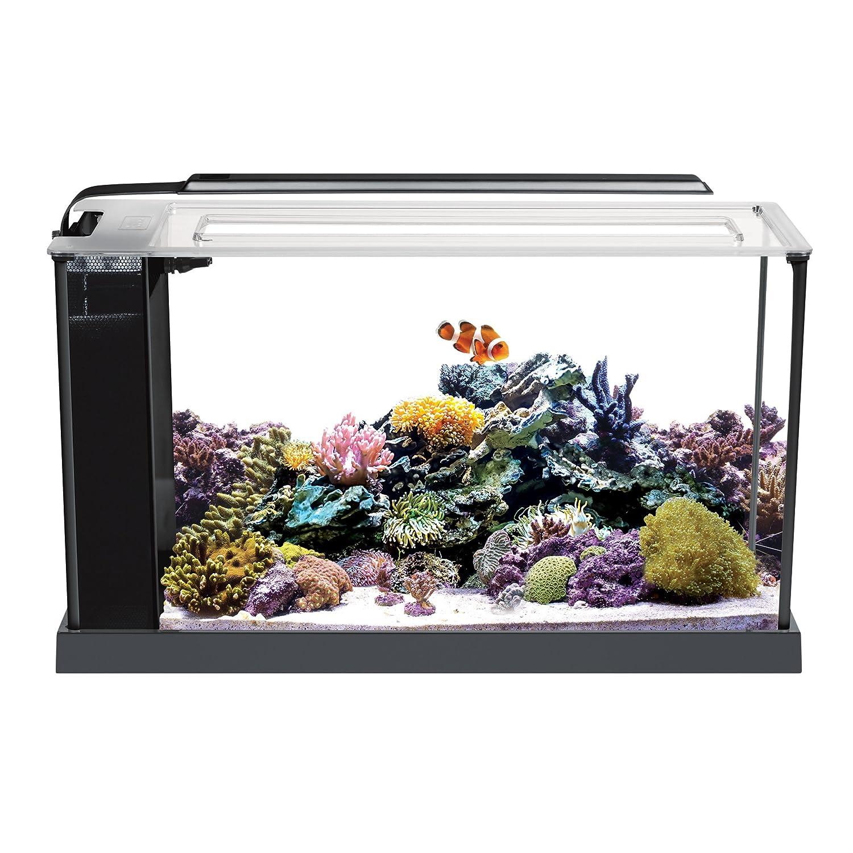Aquariums: Amazon.com: Marine Aquariums, Fish Tanks, & Saltwater ...