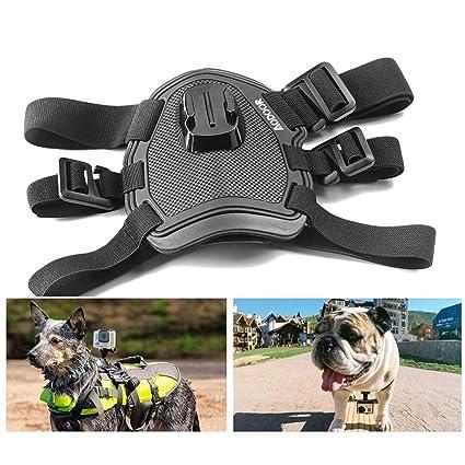 Aodoor Pecho y Espalda para perro ajustable elástico cuerpo hombro ...