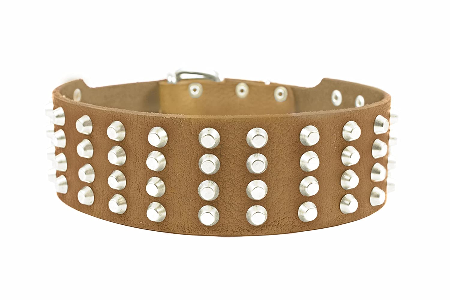 Dean and Tyler 4 Row Studs , Extra Wide Dog Collar with Strong Nickel Studs Tan Size 30-Inch by 2-1 4-Inch Fits Neck 28-Inch to 32-Inch