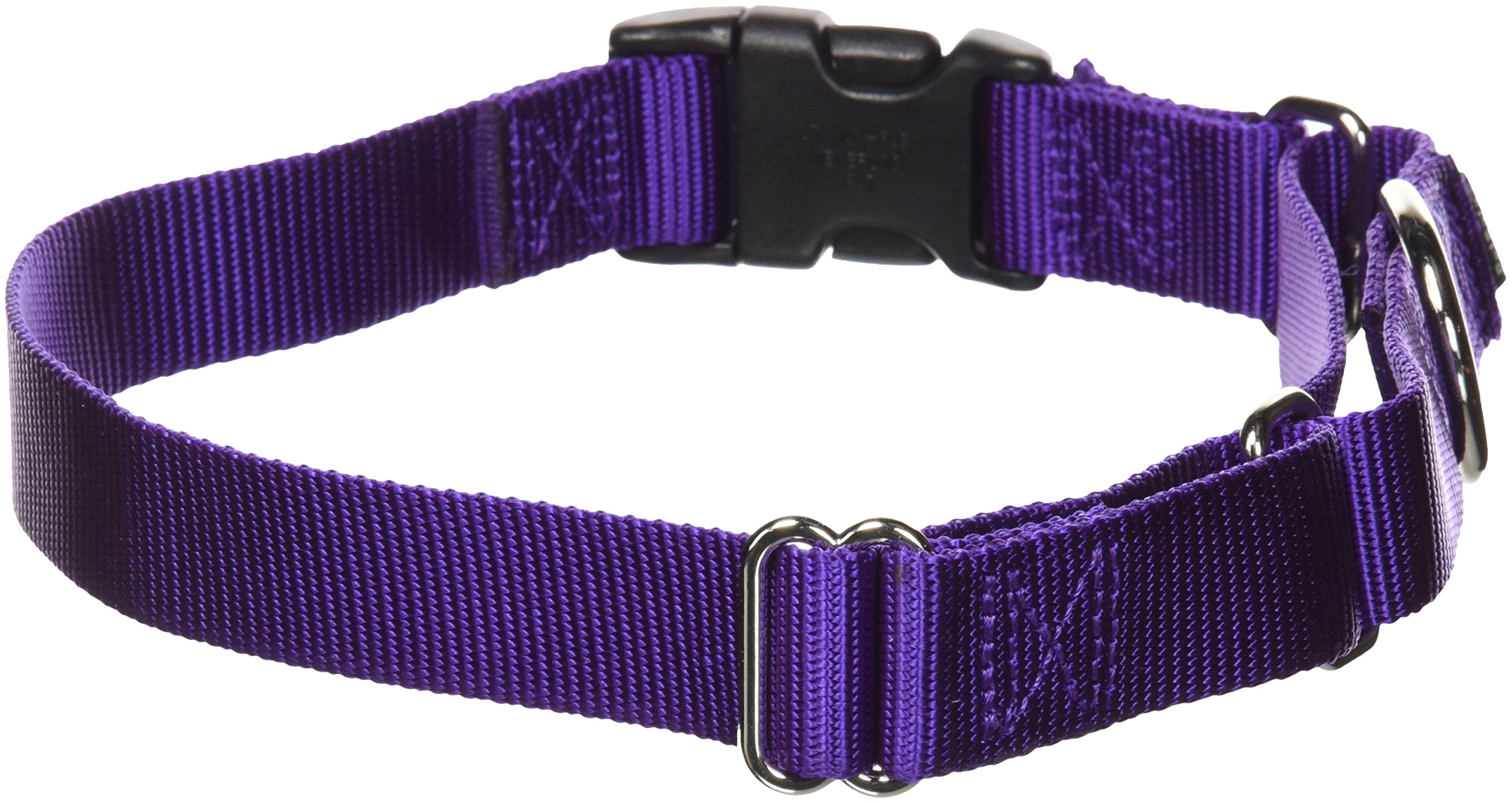 PetSafe Martingale Collar with Quick Snap Buckle, 1'' Large, Deep Purple