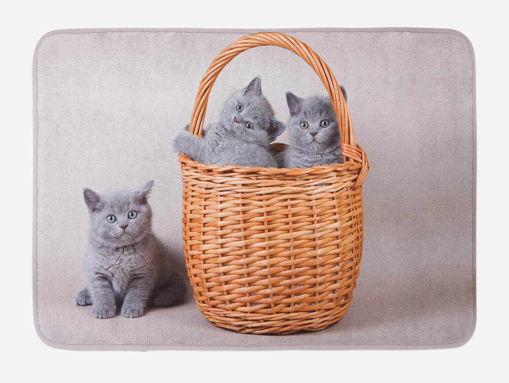 Ambesonne Kitten Bath Mat, Three British Cats Kitties in Basket Adorable Baby Animals Fluffy Pets, Plush Bathroom Decor Mat with Non Slip Backing, 29.5 W X 17.5 W Inches, Grey Pale Brown Dust