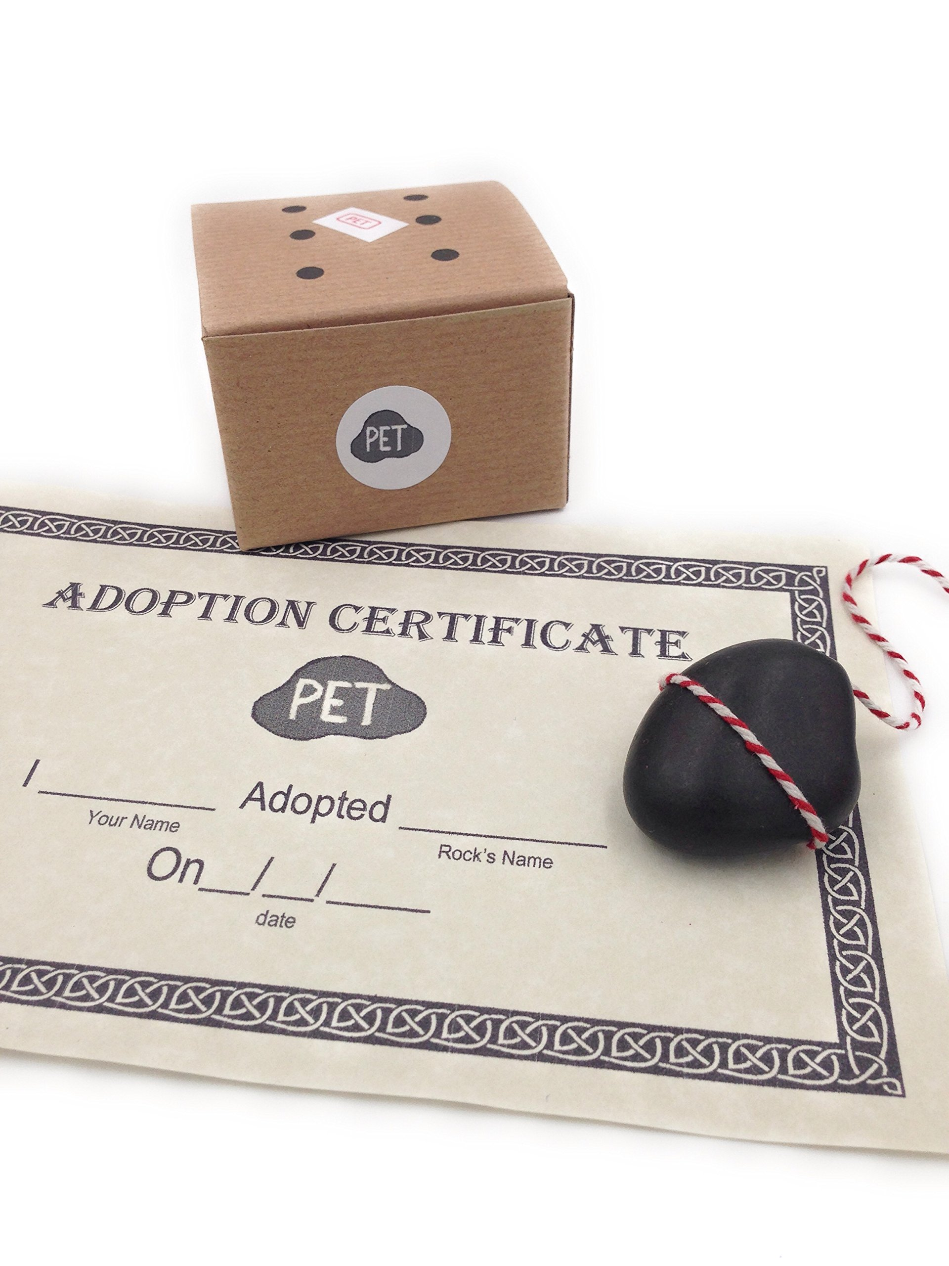 Wenivere's Rock Pet with Adoption Certificate and Adjustable Leash