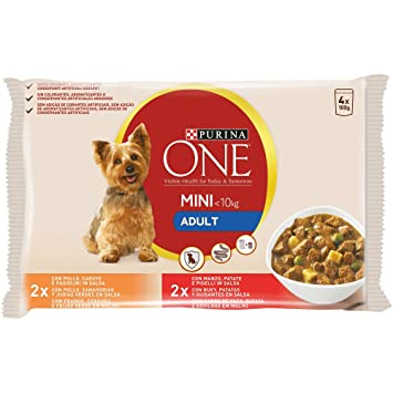 Purina ONE Mini en Salsa Perro Adulto Pollo y Buey 10 x [4 x 100 g]: Amazon.es: Productos para mascotas