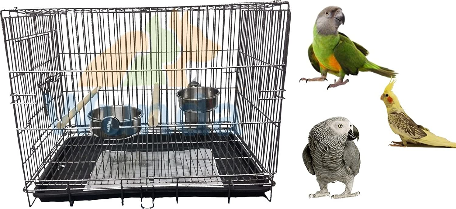 LIBERTA PARROT CARRYING MEDIUM BIRD COCKATIEL AMAZON TRANSPORT TRAVEL VET HOLIDAY CAGE