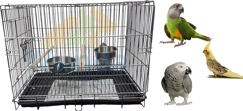 Liberta Parrot Transport M Cage à oiseaux perruche Amazon Transport Voyage Vet vacances