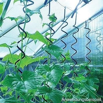 Pflanzenspirale Fur Juliana Gewachshaus Amazon Co Uk Garden Outdoors