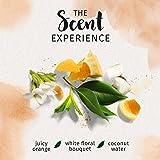 Herbal Essences Biorenew Golden Moringa Oil