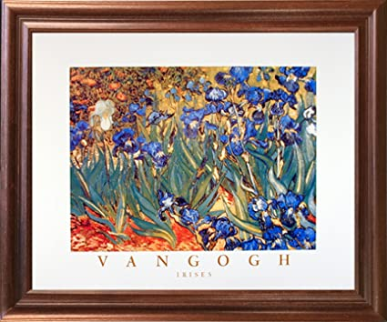 Vincent Van Gogh Irises Flower Garden (Floral) Fine Mahogany Framed Art  Print Picture (