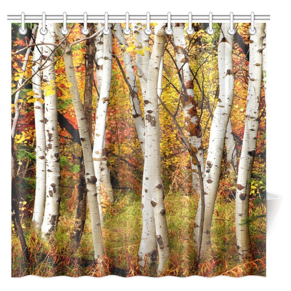 INTERESTPRINT Fall Woodland Shower Curtain White Birch Trees With Autumn Leaves Growth Wilderness Ecology Calm View Fabric Bathroom
