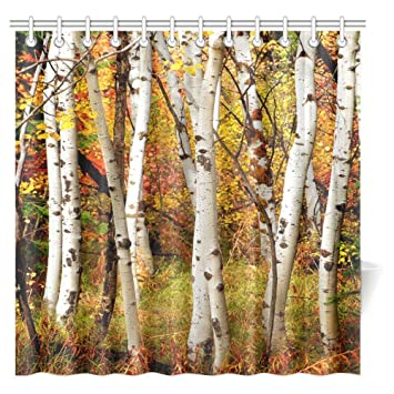 InterestPrint Fall Woodland Shower Curtain White Birch Trees Autumn Leaves Growth Wilderness Ecology Calm