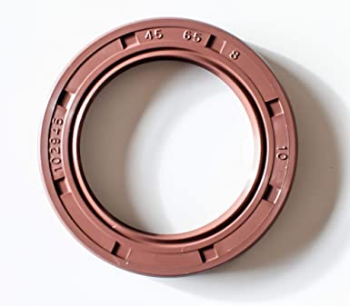 Metal Case w//Viton Rubber Coating 6 PCS TC Double Lip w//Stainless Steel Spring EAI VITON Oil Seal 45mm X 65mm X 8mm