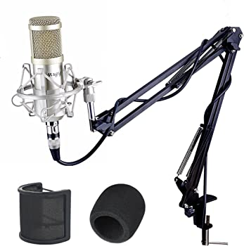 Mugig Condenser Adjustable Recording Mic